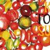 高知トマトサミット2017!約30ブランドの県内トマトが集結!