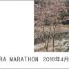 第10回 四万十川桜マラソン大会!申込締切、1月20日(土)まで!